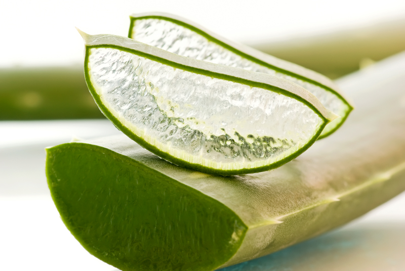 Aloe Vera and Beauty Fixes!  Private Space for Women