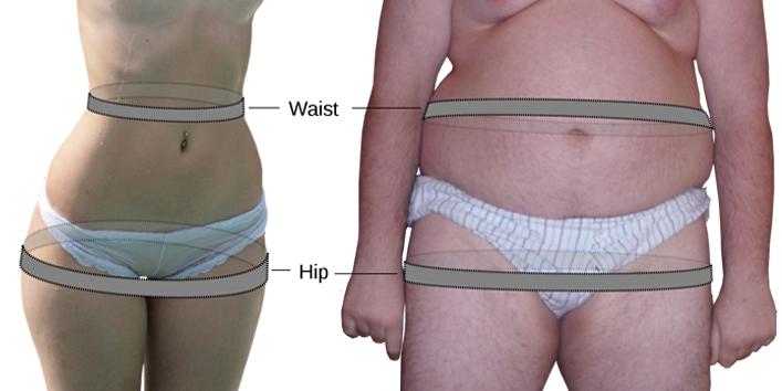 hip measure ment